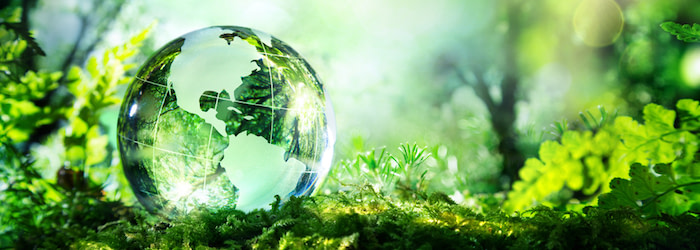 Managed Print Services (MPS): Lower Your Print Costs, Increase Sustainability   RYAN Business Systems